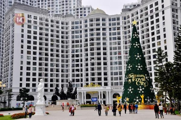 Cây thông Noel khổng lồ tại Quảng trường Khu đô thị Royal City được dựng từ cuối tháng 11/2014. Quảng trường với quần thể các tác phẩm điêu khắc theo kiến trúc vườn châu Âu kết hợp với cây thông Noel đặc biệt này đã thu hút sự chú ý nhiều người.