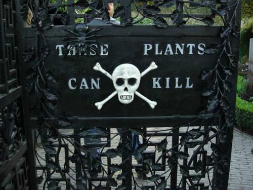 Cận cảnh khu vườn tuyệt đẹp nhưng có khả năng giết người