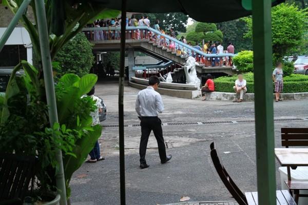 Hồ Ngọc Hà, Cường Đô la