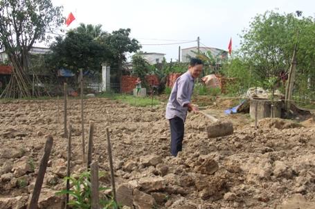 Ông Quang xới đất để chuẩn bị đón những gốc đào khách hàng gửi
