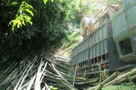 Một vụ tai nạn lật xe chở luồng vào tháng 8/2014 cũng tại địa phận huyện Quan Hóa.