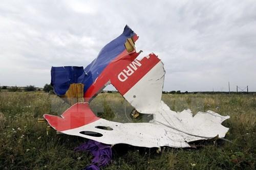 Xuat hien bang chung diep vien CIA chi dao ban roi MH17
