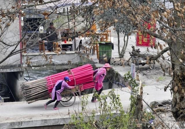 Người dân chuyển những bó hương trầm tới xưởng đóng gói.