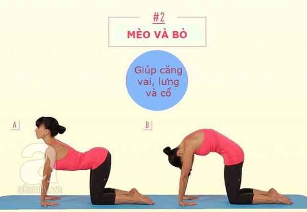 động tác kéo căng cơ thể 2