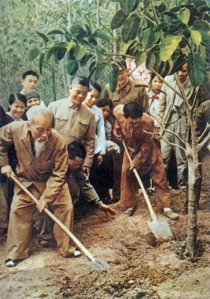 Chủ tịch Hồ Chí Minh cùng nhân dân trồng cây trong dịp