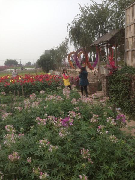 Cùng chụp cho nhau những bức ảnh đẹp trong vườn hoa.
