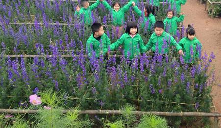 Không chỉ có người lớn, trẻ em cũng vui thích giữa vườn hoa.