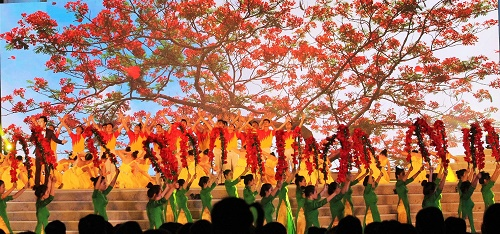 Và màu hoa phượng đỏ - biểu tượng của sắc màu thành phố Cảng