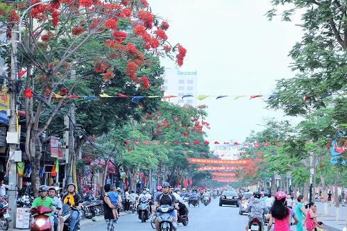 Vào dịp tháng 5 về, mọi ngả đường thành phố lại rợp trời cờ và hoa phượng nở