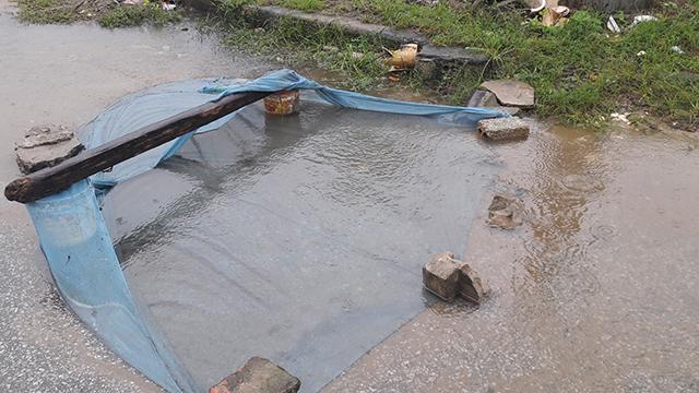 Thậm chí mang cả màn ra chắn ngang dòng nước chảy trên đường để bắt cá