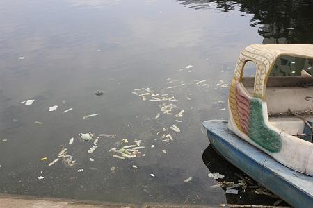 Rất nhiều bao cao su, băng vệ sinh bằng cách nào đó đưa xuống hồ gây ô nhiềm. Ảnh: Q.A