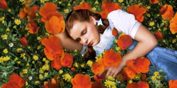 Không có nơi nào bằng gia đình - Dorothy | The Wizard of Oz