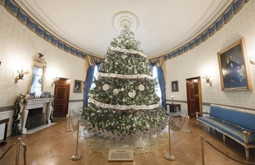 Cây thông Noel chính của Nhà Trắng được đặt ở Phòng Xanh, nơi Tổng thống tiếp đón các vị khách quý. Trên cây thông treo rất nhiều đồ trang sức bạc.