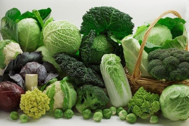 Rau củ quả, thực phẩm giàu chất xơ là yếu tố làm giảm nguy cơ ung thư đại tràng