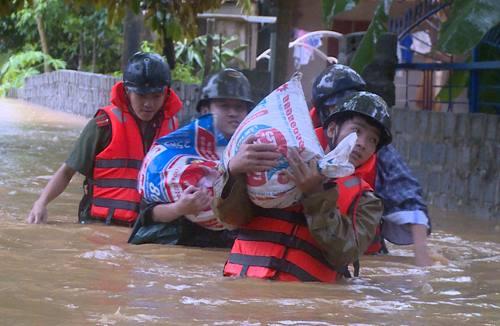 Giúp dân vận chuyển lúa đến nơi khô ráo