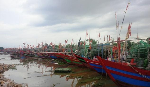3.478 tàu, thuyền đã vào các nơi tránh trú bão an toàn.