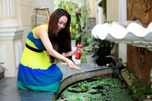 Cô ca sĩ khá quan tâm đến phong thủy khi đặt một bể cá cảnh trong nhà.