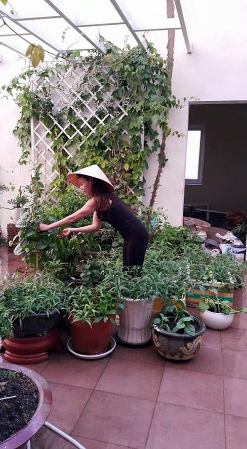 Ngoài công việc nhà, hàng ngày, mẹ Hồ Ngọc Hà đều tranh thủ những phút rảnh rỗi để chăm sóc cây cối trong vườn, trồng rau sạch để đảm bảo cho những bữa ăn hàng ngày.