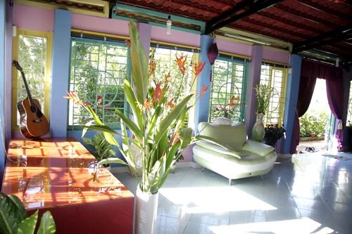 Không chỉ có một vườn cây rộng lớn, Nguyễn Phi Hùng còn trang trí rất nhiều cây cảnh trong nhà.