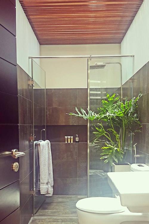 Khu vực phòng tắm cũng đặt một chậu cây xanh nhìn rất sinh động, mát mắt.