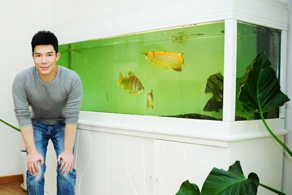 Nathan Lee cũng rất thích nuôi cá trong nhà và anh thiết kế cho căn hộ mình tận hai bể cá đắt tiền.
