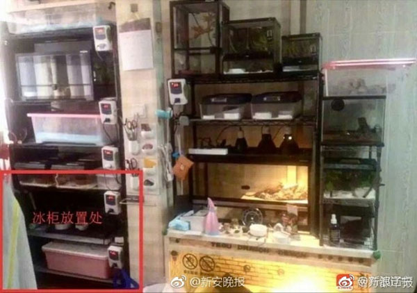 Tủ lạnh ở tầng hầm nơi phi tang xác vợ của gã chồng máu lạnh.