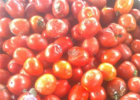 Không chỉ rau củ, cà chua dập, úng thối vẫn được bày bán với giá chỉ từ 3.000 đồng/kg