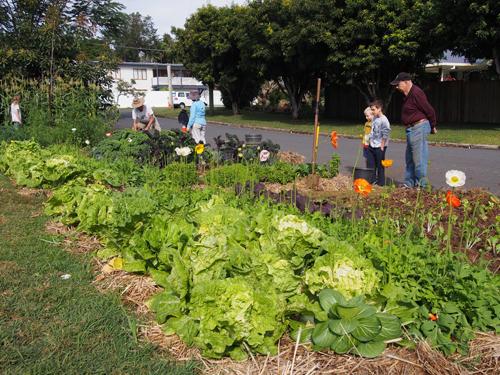 Năm 2009, ông Duncan McNaught và bà Caroline Kemp trồng thử nghiệm rau quả trên một con phố ở vùng Buderim (bang Queensland, Australia). Hai ông bà muốn khởi đầu một cuộc sống lành mạnh với môi trường trong lành, nguồn thực phẩm an toàn cho tất cả mọi người trong vùng.