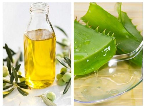 Mặt na nha đam và dầu oliu trị tàn nhang hiệu quả