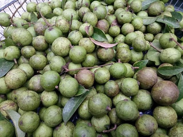 Sấu non được bày bán trong các thúng, mẹt được các tiểu thương bán kèm cùng các loại rau, củ quả khác.