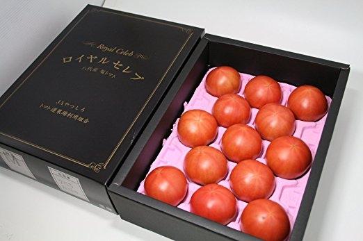 Kết quả hình ảnh cho hình ảnh trồng cà chua nhà kính nhật bản