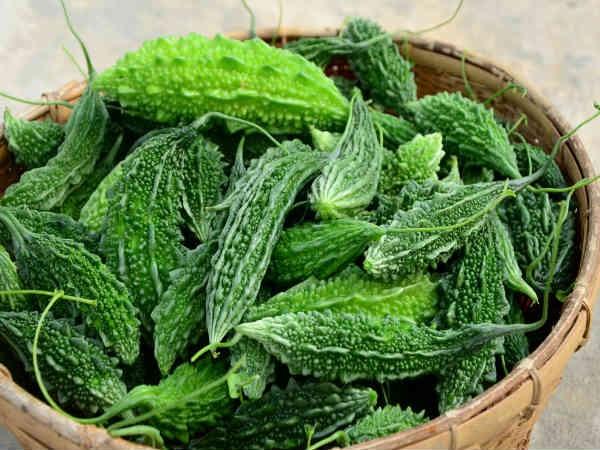 Mướp đắng có màu xanh đậm hoặc màu xanh lá cây sáng tùy thuộc vào vùng đất nuôi trồng.