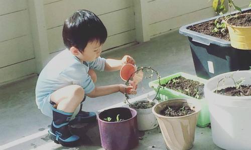 Bé Ốc, cậu con trai 27 tháng của tác giả Linh Phan, rất thích thú với các hoạt động ngoài trời. Ảnh: NVCC.