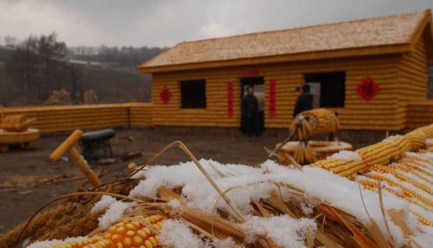 Ngôi nhà được xây hoàn toàn từ ngô của người nông dân ở Trung Quốc.