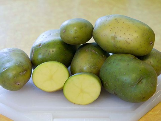 Khoai tây cũng cần được gọt bỏ sạch phần xanh để tránh nguy hại sức khỏe.