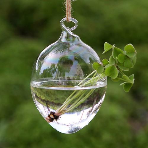 Từ lâu tiểu cảnh Terrarium trở thành một thú chơi được nhiều ưa thích bởi sự xinh xắn như khu vườn nhỏ đáng yêu. Ảnh: AliExpress.