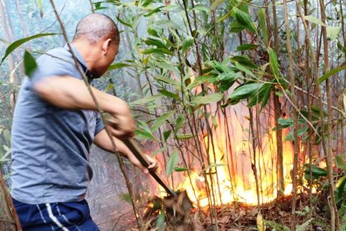 Người dân địa phương tham gia dập lửa, cứu rừng. Ảnh: Giang Chinh