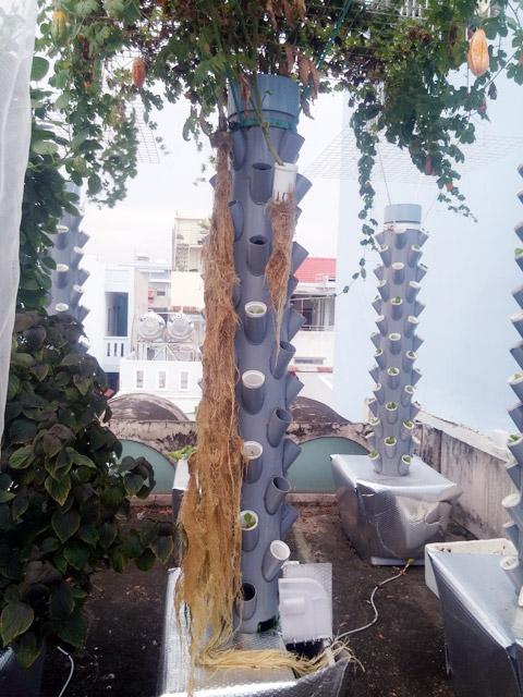 Sân thượng nhà anh Sơn rộng 21 m² nhưng diện tích vườn chỉ chiếm 10 m².