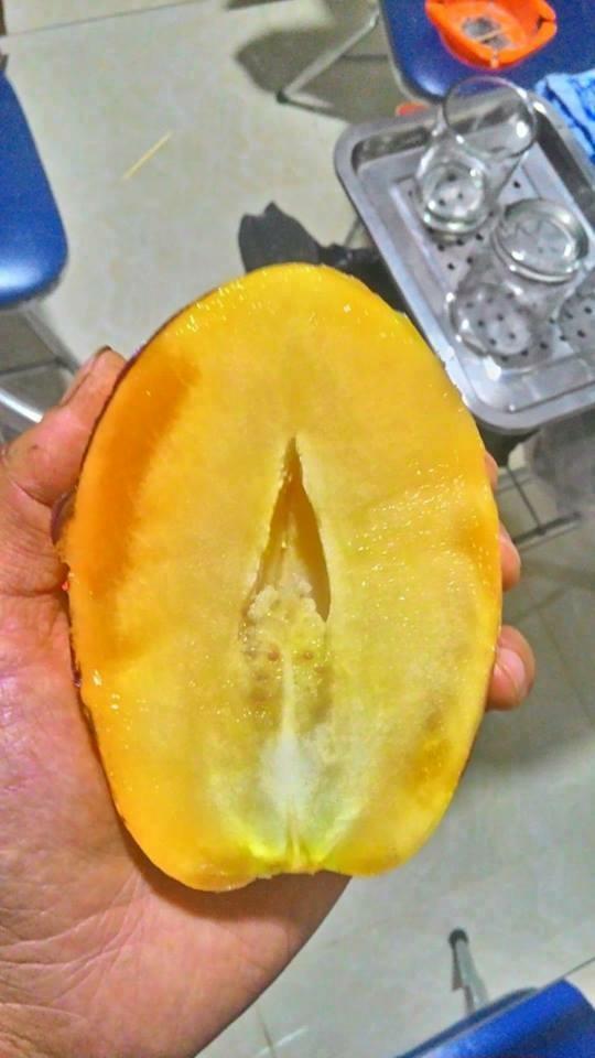 Bổ đôi bên trong quả dưa Pepino