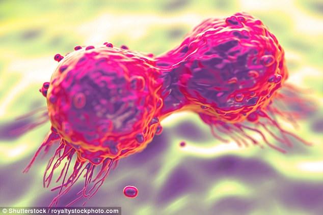 Bệnh nhân ung thư thường phải đối mặt với việc thay đổi lối sống sau khi nghe những chẩn đoán đáng sợ về căn bệnh này.