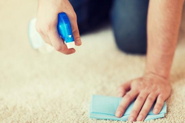 Bạn cũng nên dùng vải để thấm hút các vết bẩn trên thảm, không bao giờ dùng bàn chải cứng chà xát để tránh làm bung, hỏng các sợi vải. Khi vệ sinh, hãy lau từ vành ngoài, hướng về phía trung tâm để tránh vết bẩn lan rộng.