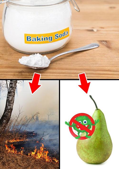 Baking soda có trong thành phần chất dập lửa, vì thế, nó có thể khống chế được đám cháy rừng nhỏ. Bạn cũng có thể khử khuẩn trên hoa quả hay rau xanh bằng cách pha một thìa baking soda với nước, sau đó nhúng rau, quả vào.