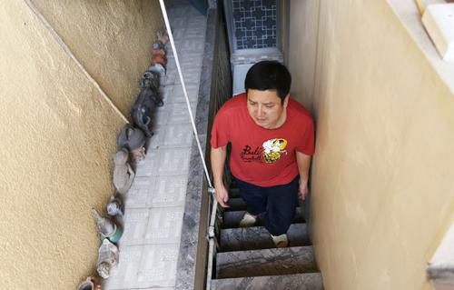 Lối nhỏ đi lên căn nhà tập thể của NS Chí Trung.