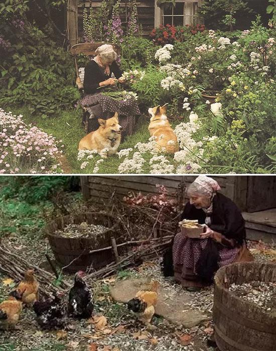 Không chỉ với cây, hoa, mà nữ nhà văn Tasha còn dành tình yêu đặc biệt của mình cho động vật.