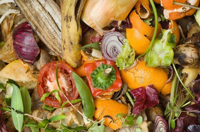 Ngoài việc làm phân bón cho cây trồng, bạn có thể đưa chúng qua bộ xử lý thực phẩm và sử dụng chúng xung quanh cà chua, ớt, và nhiều loại cây khác để nuôi lớn cây.
