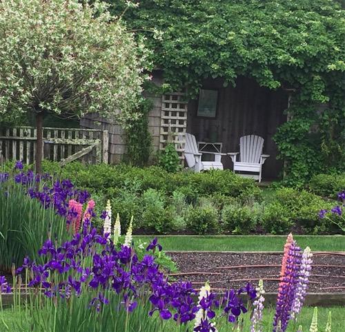 Ina thích ngồi ở vườn vào một ngày yên tĩnh và ngắm những giọt sương đọng tên những khóm hoa diên vĩ, hoa đậu lupin.