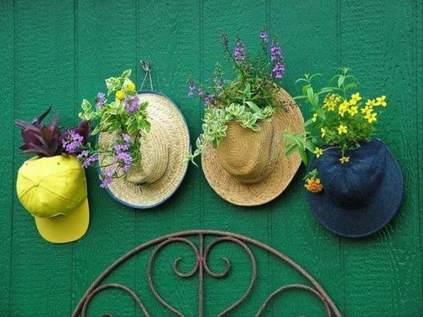 Tái sử dụng những chiếc mũ để trồng cây rồi treo chúng lên trên tường là một ý tưởng không tồi chút nào.
