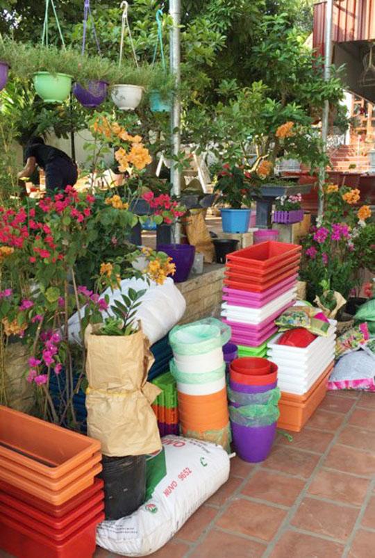Chị Điệp đầu tư khá nhiều chậu, giỏ trồng hoa.