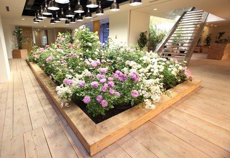 Hệ thống chiếu sáng, độ ẩm được bố trí khoa học đảm bảo an toàn cho tòa nhà và phù hợp với việc trồng đa dạng các loại cây, hoa.