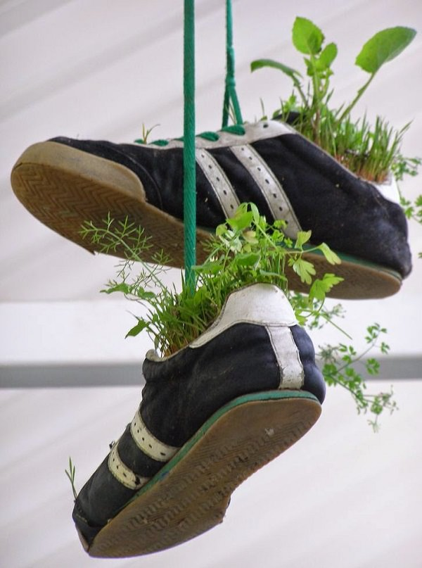 Nếu những ý tưởng phía trên vẫn chưa đủ độc đáo với cá tính của bạn, hãy thử treo những chiếc giày cũ lên dây treo, thêm ít đất, và trồng vào đó một vài cây nhỏ. Chắc chắn rằng khu vườn của bạn sẽ thật phá cách và mới mẻ đấy!